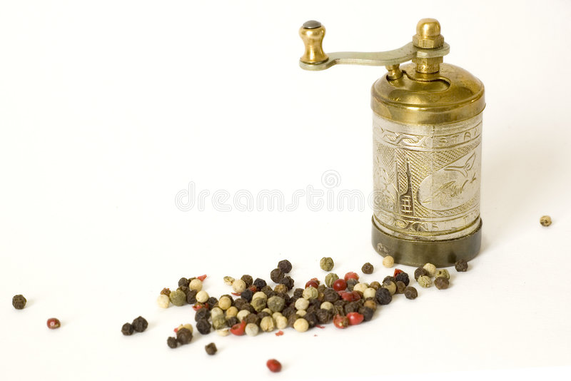 Pepper-box lizenzfreie stockfotos