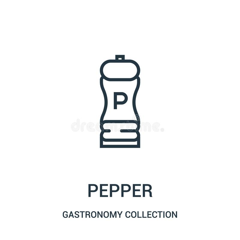 pepper icon vector from gastronomy collection collection. Thin line pepper outline icon vector illustration stock illustration