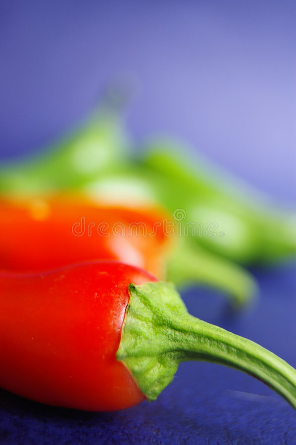 Pepper macro royalty free stock photography