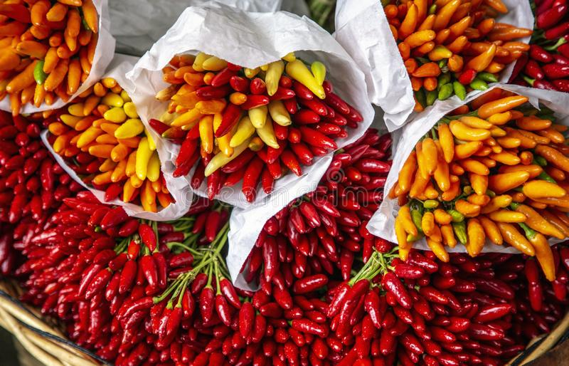 Pepper at the Market royalty free stock photo