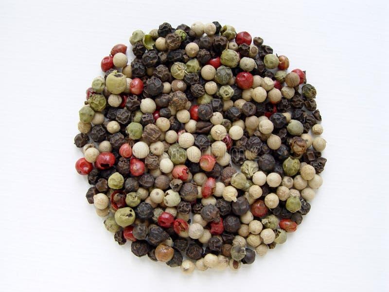 pepper mieszanych obraz stock