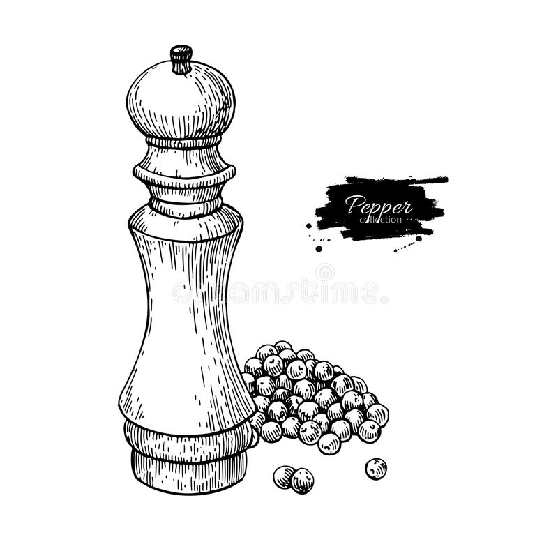 Pepper mill with heap of peppercorn vector drawing. Seasoning and spice grinder sketch. Black pepper shaker. Cooking and backing ingredient. Hand drawn food royalty free illustration