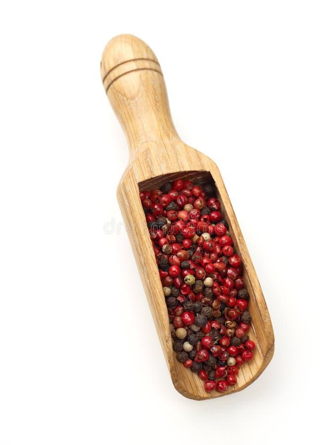 Pepper scoop stock photo