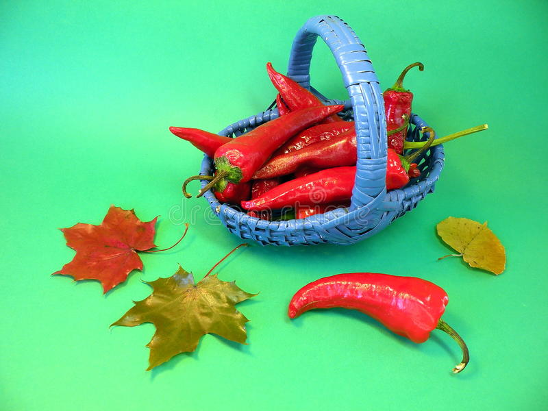 Download Pepper in wicker stock photo. Image of leaves, nature - 27013606