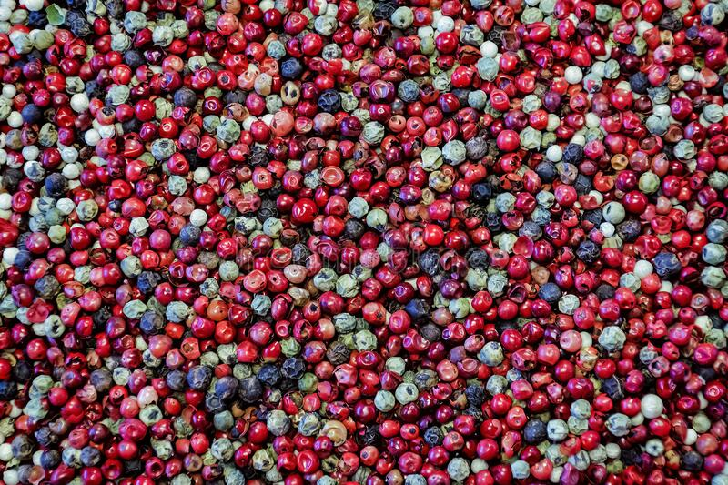 Peppercorn mix texture royalty free stock photo
