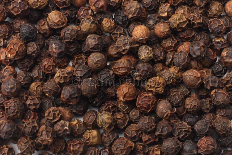 peppercorn Pepe nero Struttura dei granelli di pepe del fondo dei granelli di pepe fotografie stock