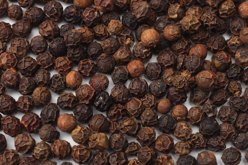 peppercorn Poivre noir Grains de poivre fond, texture de grains de poivre image stock