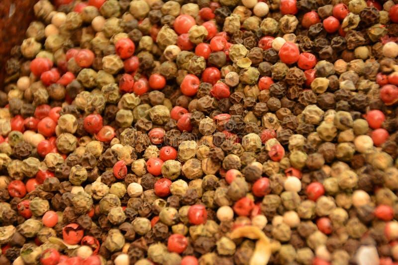 Peppercorns - μαύρα, άσπρος, κόκκινος στοκ εικόνες