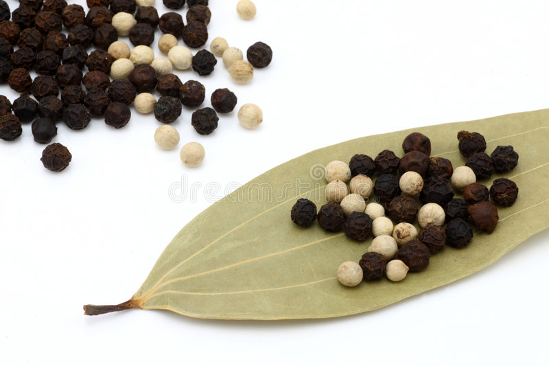Peppercorns with bay leaves stock photography
