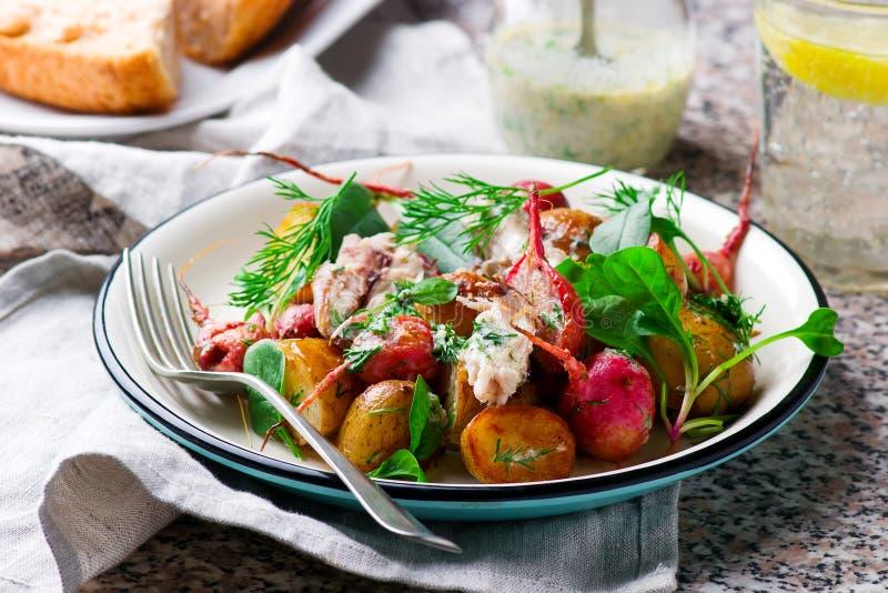 Peppered de nieuwe aardappel van de braadstukradijs makreelsalade royalty-vrije stock afbeeldingen