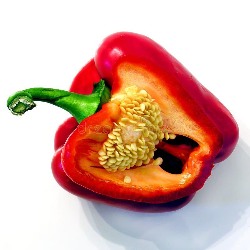Pepperitis fotografie stock libere da diritti