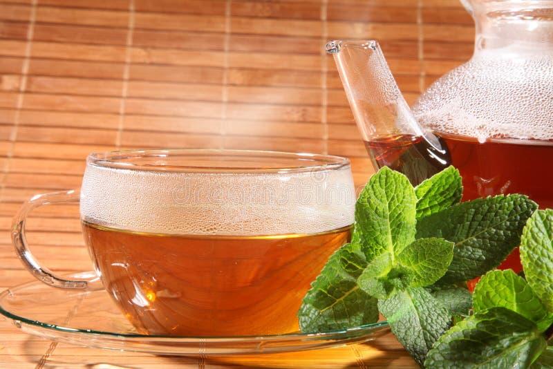 Peppermint τσάι στοκ εικόνες με δικαίωμα ελεύθερης χρήσης