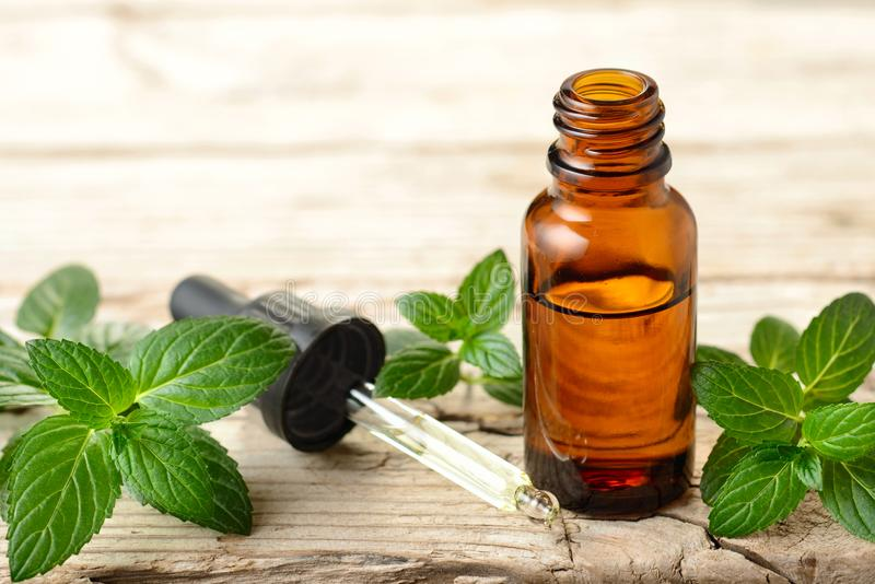 Peppermint essential oil and leaves on the wooden board stock images