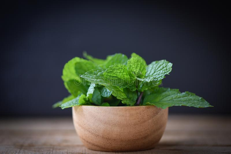 Peppermint leaf in a wood bowl - Fresh mint leaves on dark background. Peppermint leaf in a wood bowl / Fresh mint leaves on dark background royalty free stock image