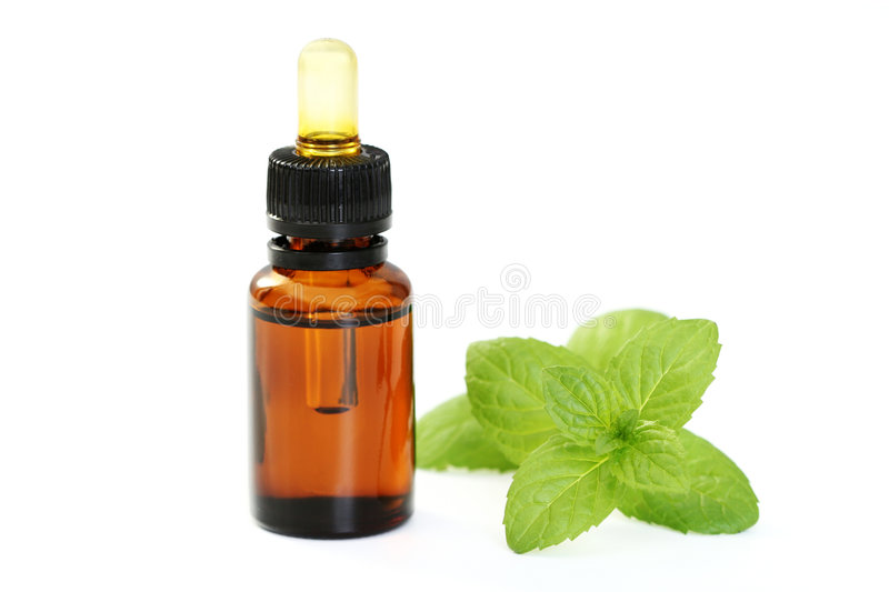 Download Peppermint oil stock image. Image of spearmint, background - 8652137