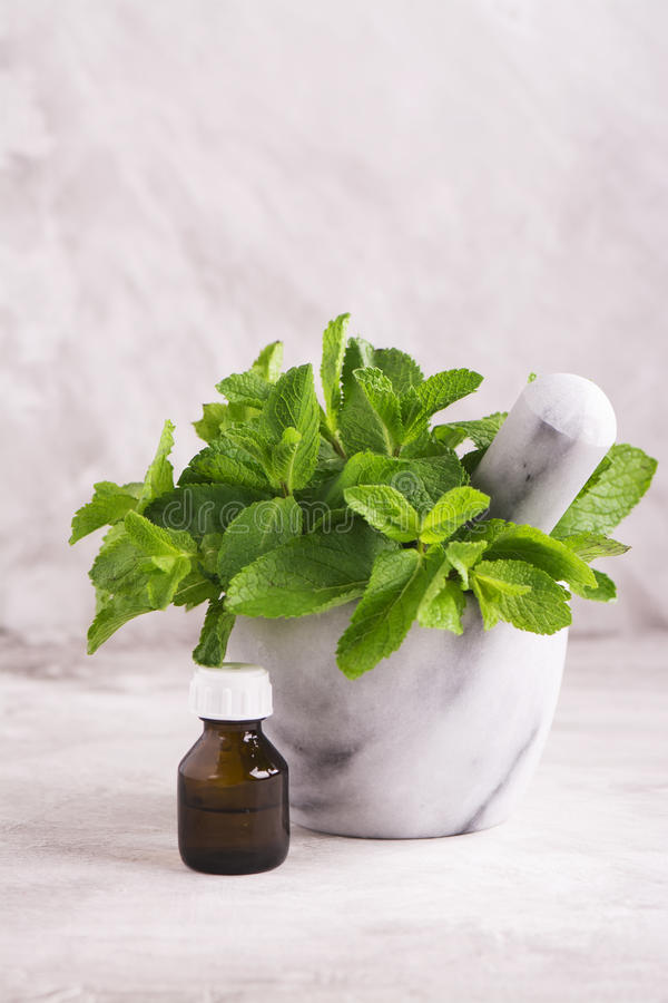 Peppermint oil and fresh mint leaves over wooden table stock image