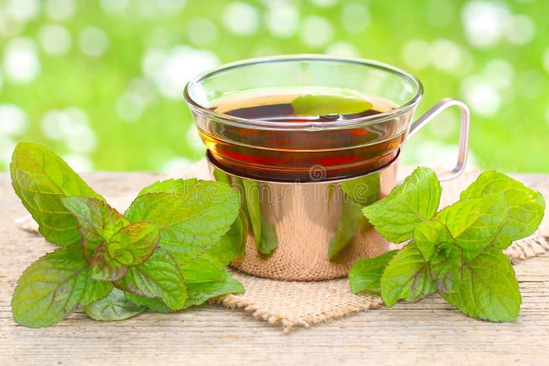 Peppermint tea stock photo