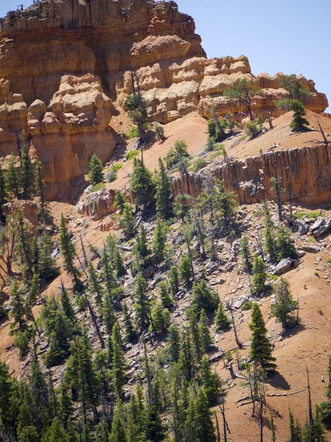 Pepperpot-Felsen im rote Schlucht-Nationalpark, Utah, USA stockfoto