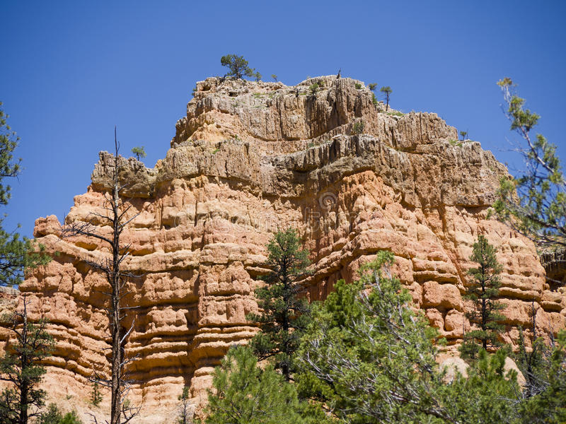 Pepperpot Rocks in Red Canyon National Park, Utah, USA royalty free stock photos