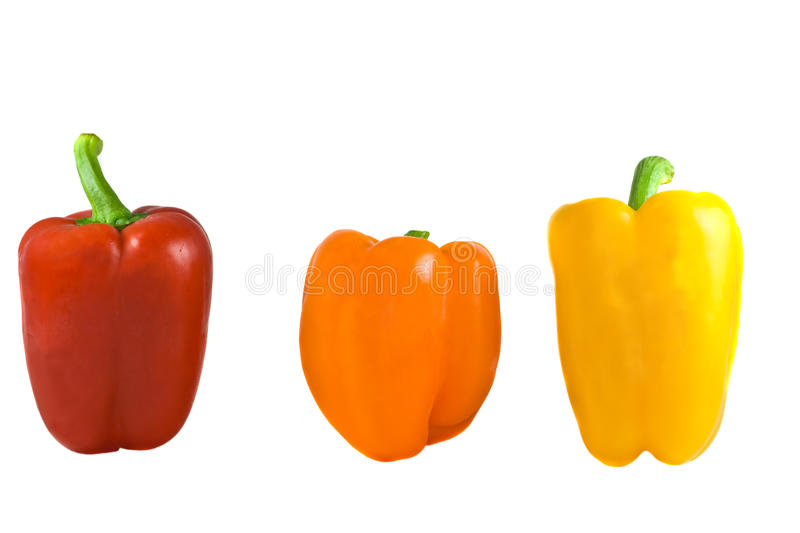 Download Peppers stock image. Image of produce, line, upright - 16418441