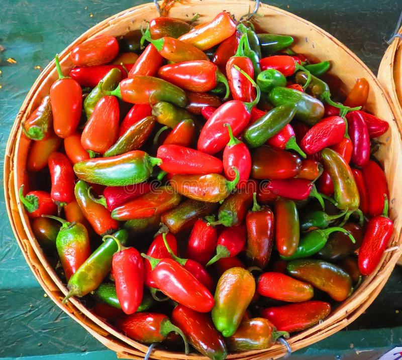 Peppers in a basket royalty free stock image
