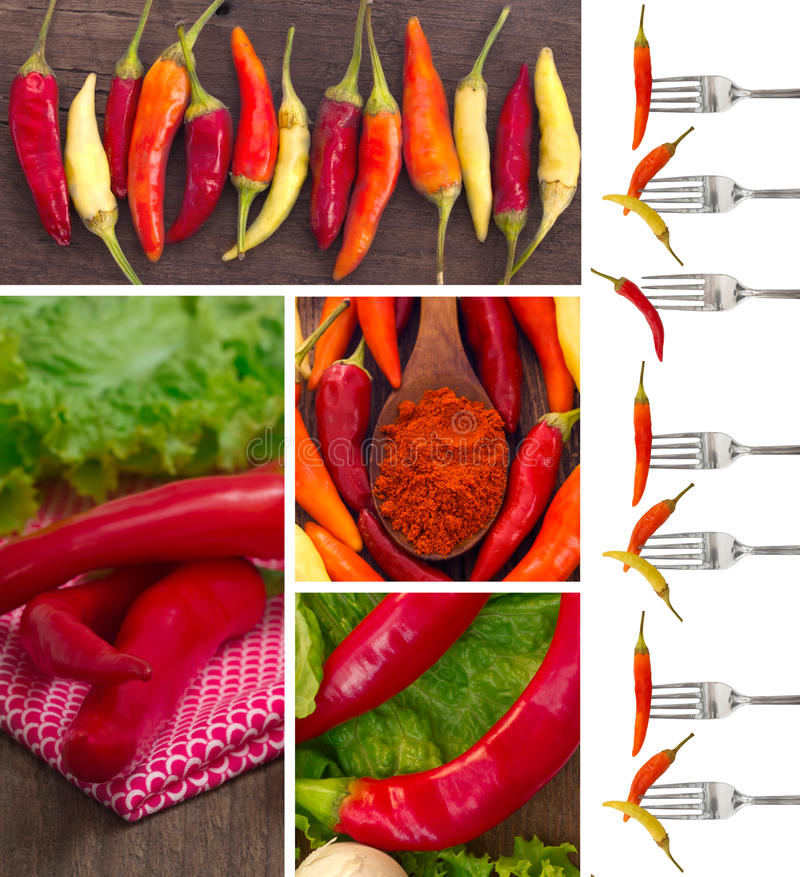 Peppers collage royalty free stock images