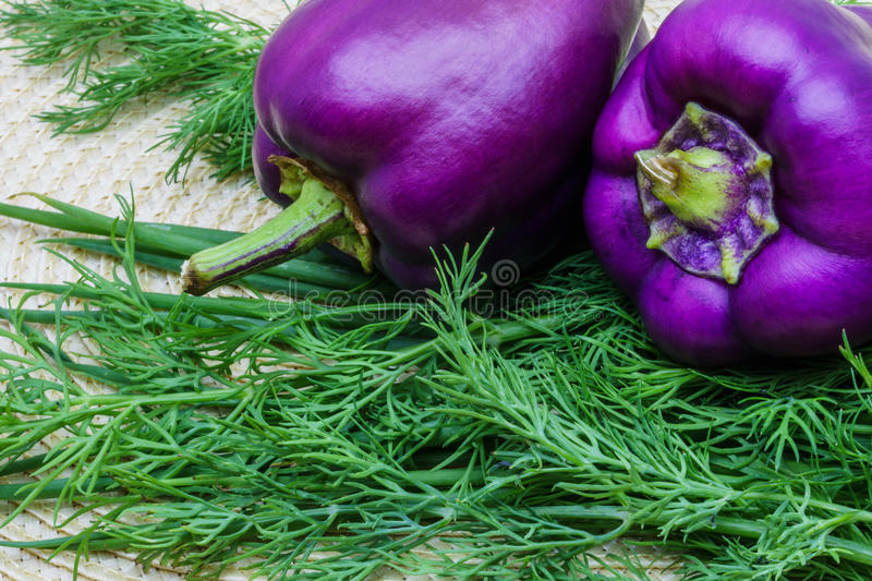 Peppers and dill on a napkin royalty free stock photo
