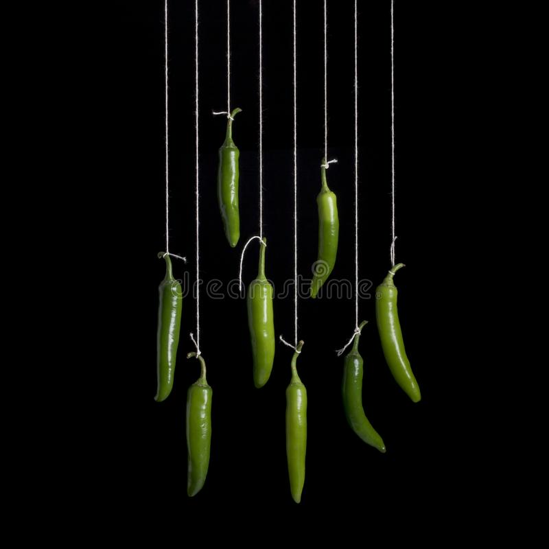 Peppers hanging on black background stock images
