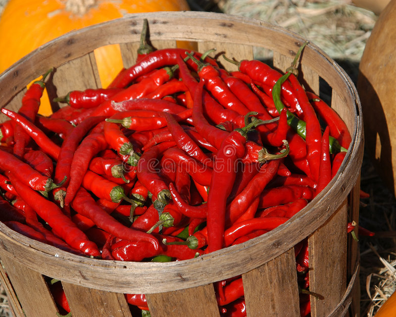 Download Peppers II stock image. Image of pepper, piquancy, vegetables - 30477
