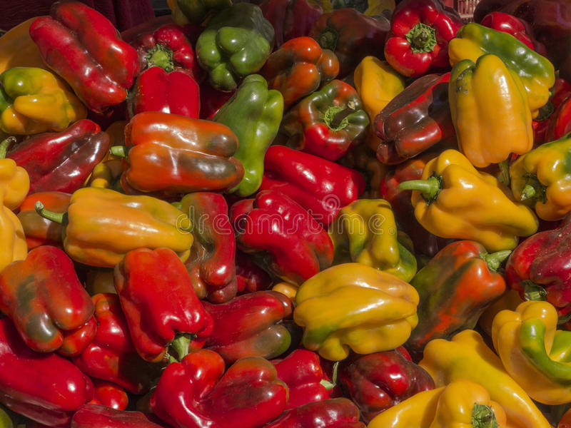 Peppers red yellow and green royalty free stock image