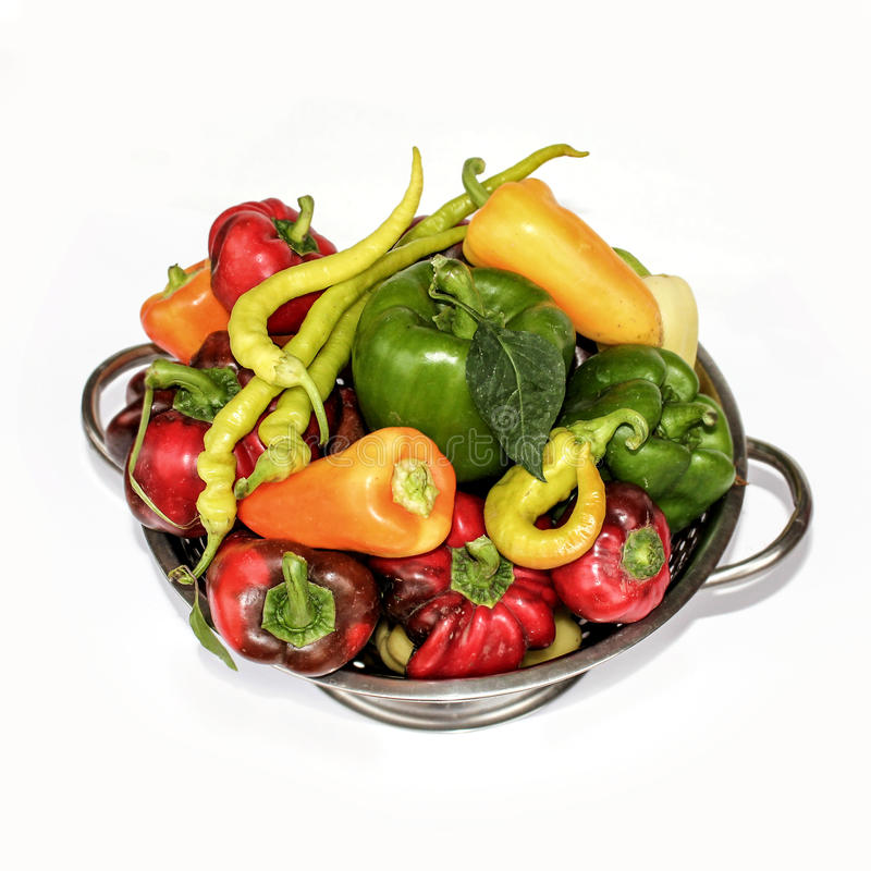 Peppers in a sieve royalty free illustration