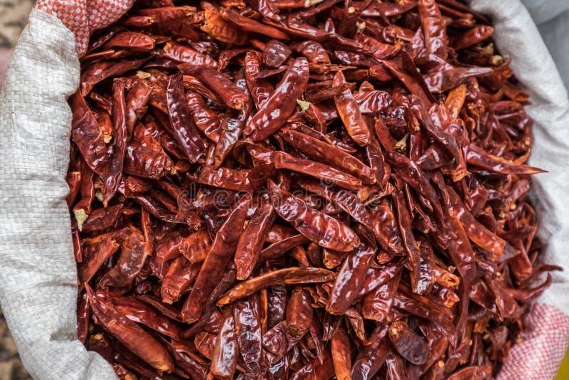 peppra rött kryddigt fotografering för bildbyråer