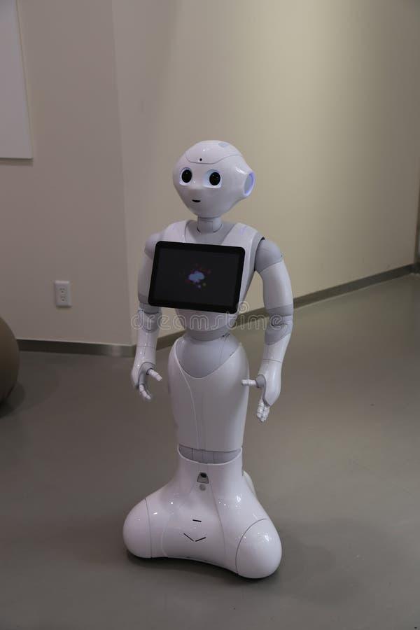Peppra roboten royaltyfri foto