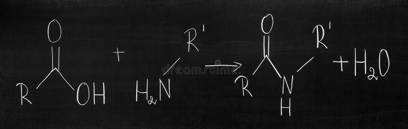 Peptidbindungen stock abbildung