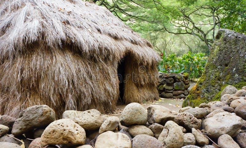 Pequeña cabaña de la hierba en el valle de Oahu Waimea fotos de archivo