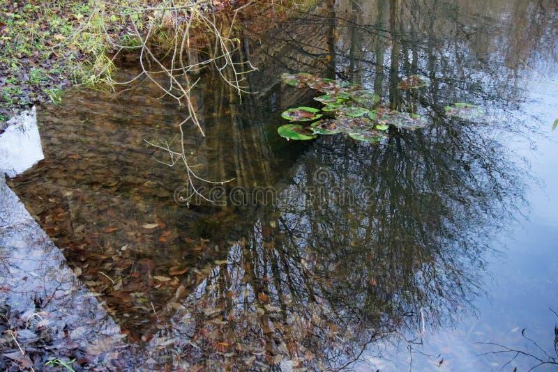 Pequeña cabina reflejada en el lago imagen de archivo