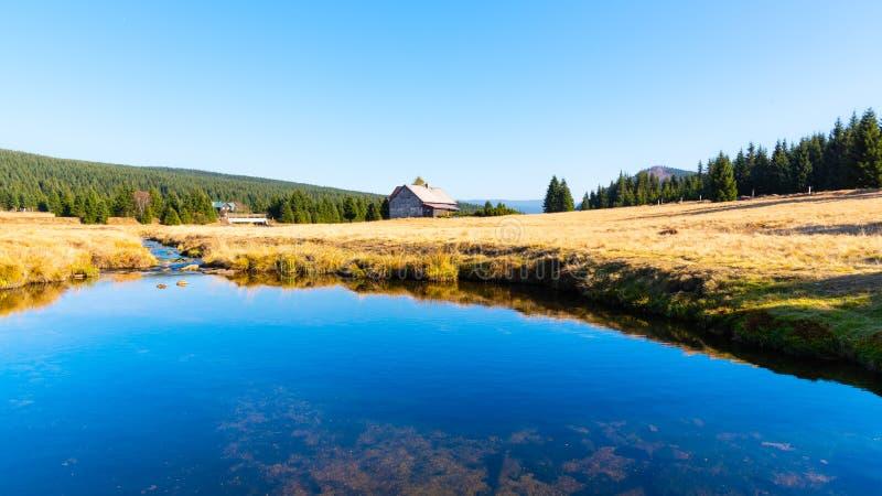 Pequeña cala de la montaña que serpentea en el medio de prados y de día soleado del bosque con el cielo azul y las nubes blancas  foto de archivo libre de regalías