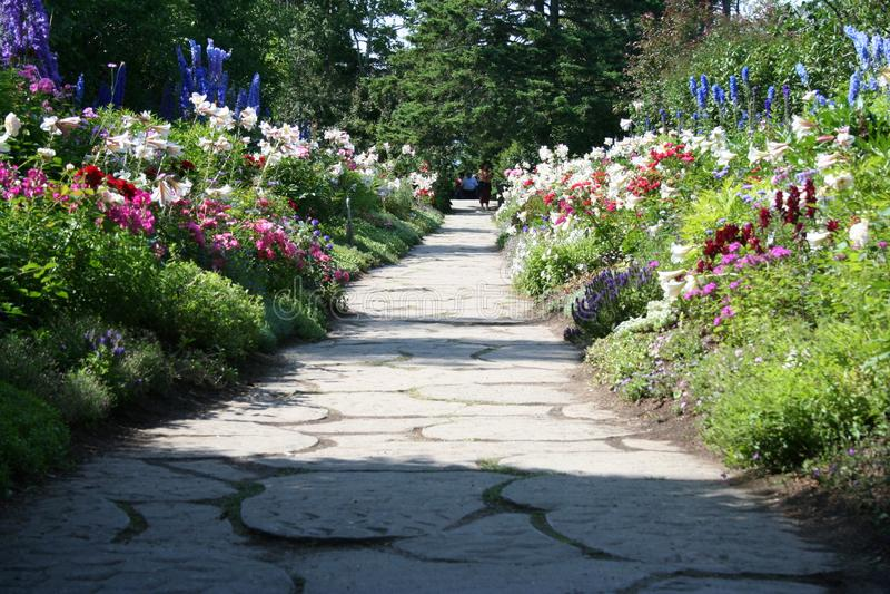 Pequeña calzada alineada con las flores hermosas fotografía de archivo libre de regalías