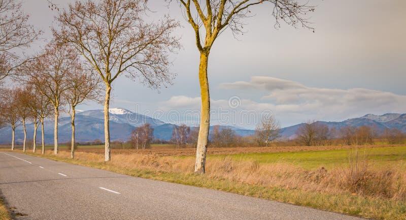 Pequeña carretera nacional cerca de las montañas de los Vosgos fotos de archivo