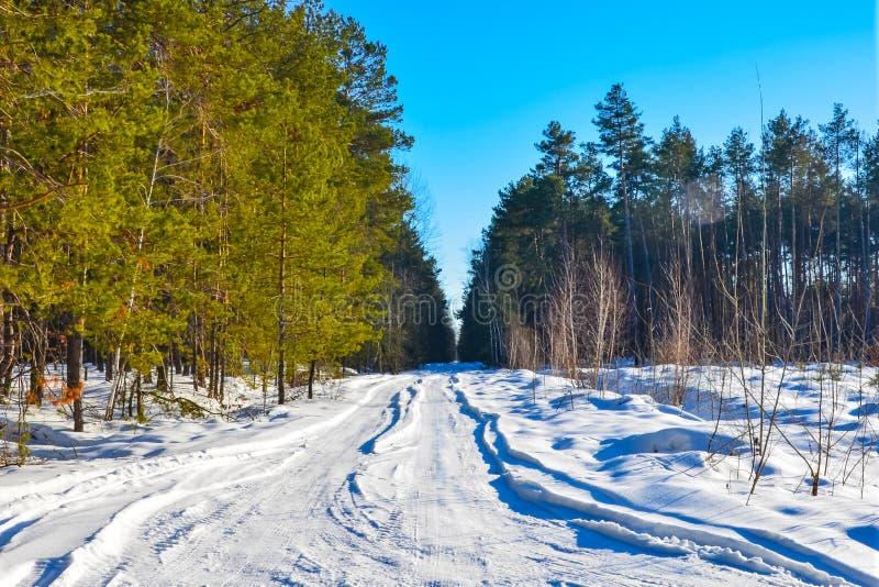 Pequeña carretera nacional del invierno a través de campos nevosos fotos de archivo libres de regalías