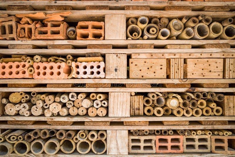 Pequeña casa del insecto y del insecto fotografía de archivo libre de regalías