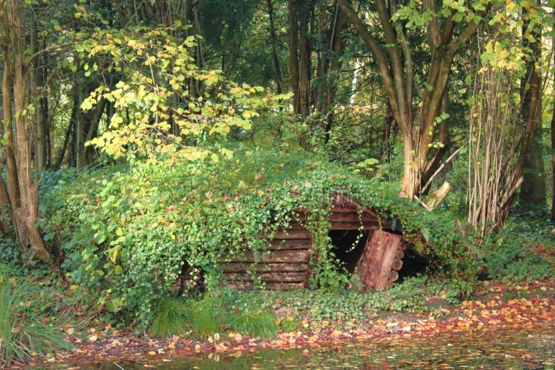 Pequeña casa en bosque durante el otoño fotografía de archivo libre de regalías