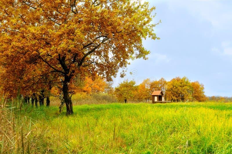 Pequeña casa sola en el bosque del otoño - paisaje del otoño imagen de archivo libre de regalías