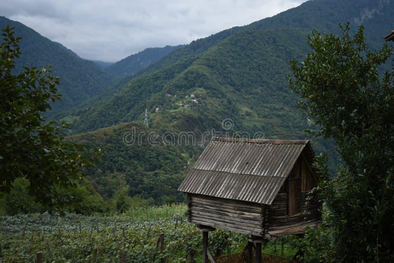 Pequeña casa vieja en la colina fotos de archivo