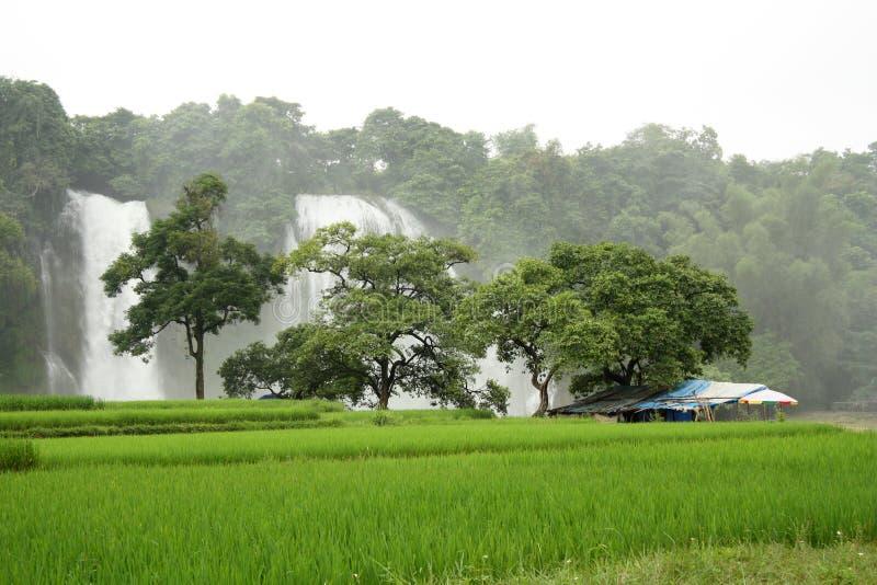 Pequeña casa y cascada ocultadas en las zonas tropicales fotografía de archivo libre de regalías