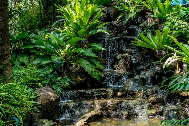 Pequeña cascada con las plantas verdes imagenes de archivo