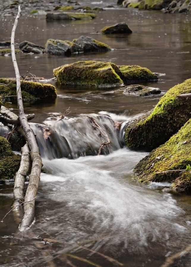 Pequeña cascada con madera de deriva y piedras foto de archivo libre de regalías
