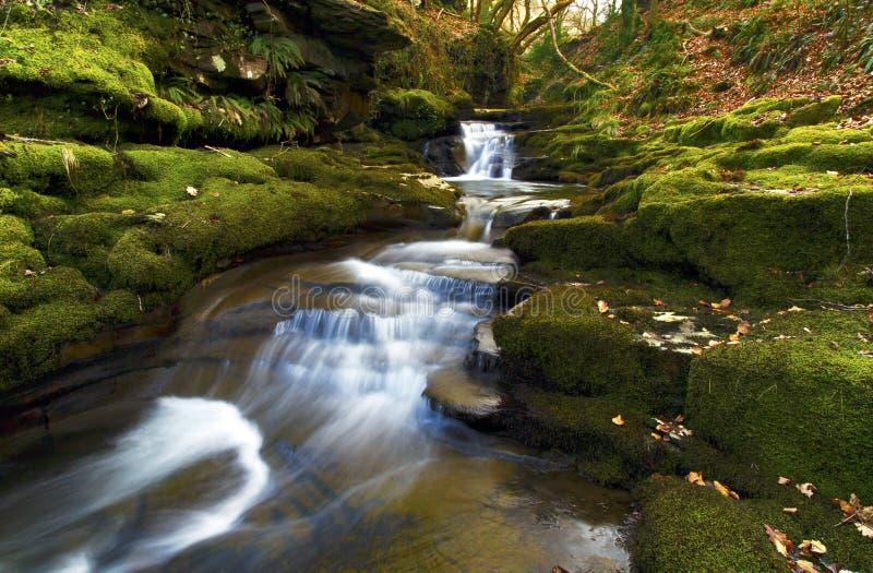 Pequeña cascada, Creunant apenas debajo de Pwll y Alun fotos de archivo