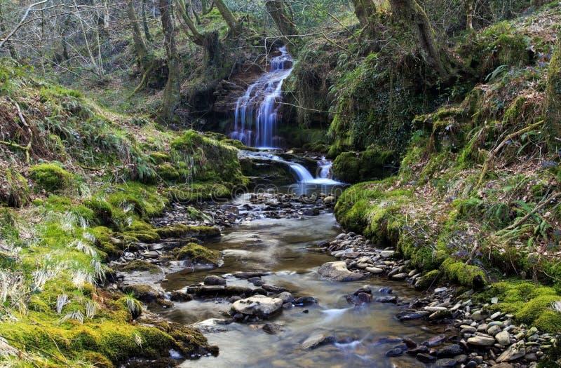 Pequeña cascada, Creunant apenas debajo de Pwll y Alun foto de archivo libre de regalías