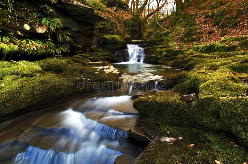 Pequeña cascada de Pwll y Alun, río de Creunant fotos de archivo